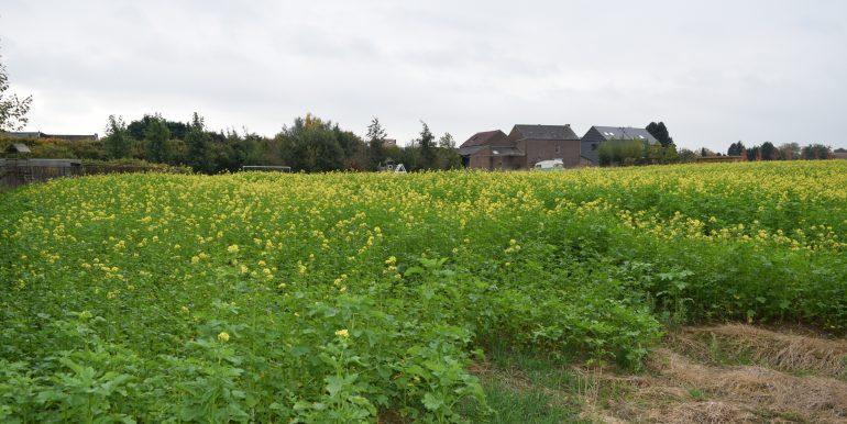 coenen-lv-outgaarden-014