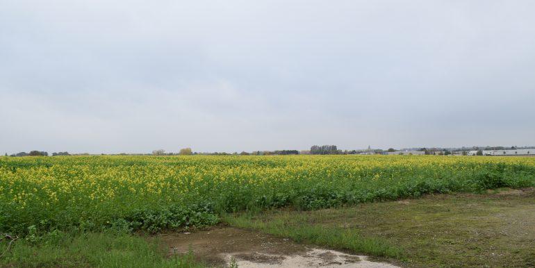 coenen-lv-outgaarden-018