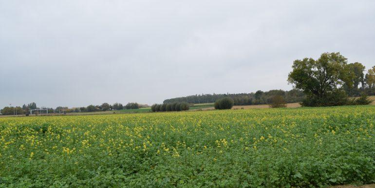 coenen-lv-outgaarden-020